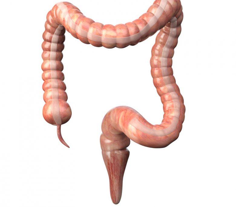 Amibiaza-intestinala